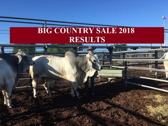 SALE O SALE O DAY TWO BIG COUNTRY SALE