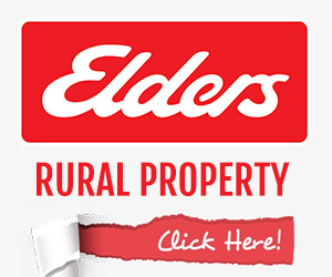 Elders Property's