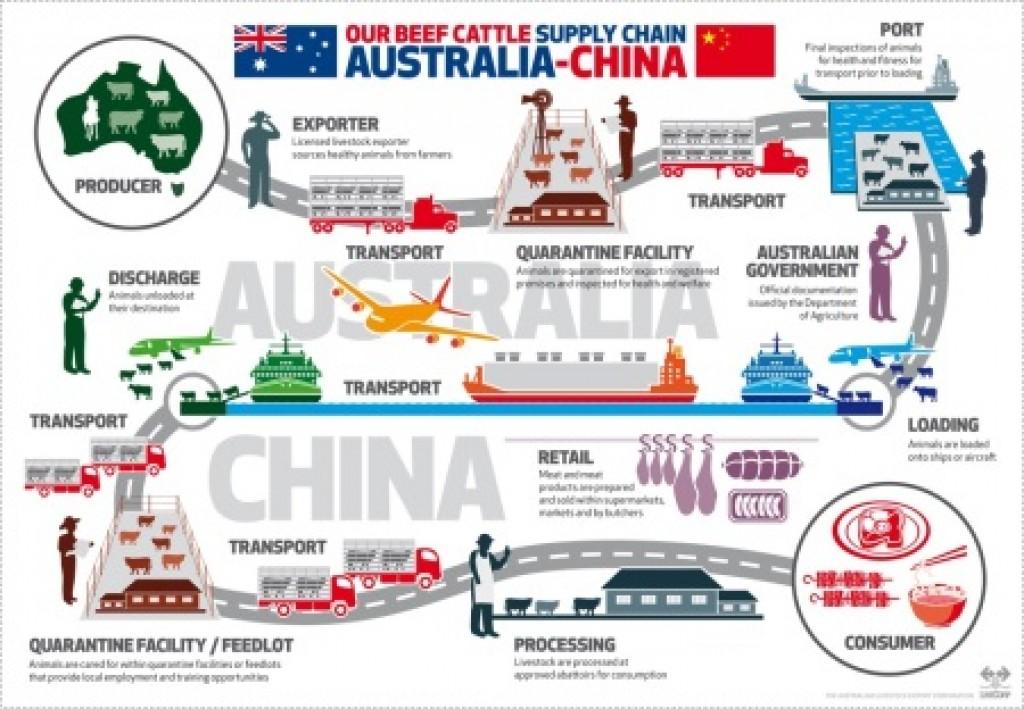 Live Export protocol to China - Jim Pola Digital Marketing 7e9cf5bc679