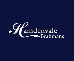 Hamdenvale Brahmans
