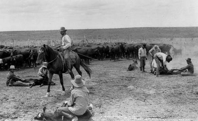 City played a role in Old West cattle drives